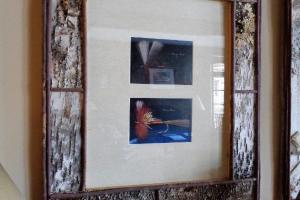 176A Pair Birch Framed Fly Prints